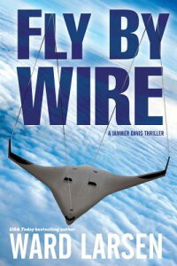 FlybyWire