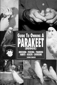 Guide_to_Owning_a_Parakeet