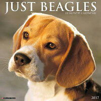 JustBeagles[WillowCreekPress]