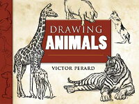 Drawing_Animals