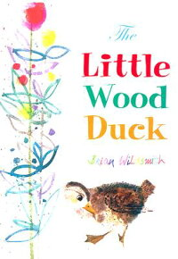 The_Little_Wood_Duck