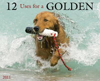 12_Uses_for_a_Golden