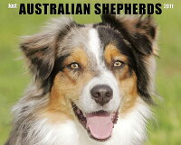 Just_Australian_Shepherds