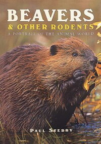 Beavers_&_Other_Rodents