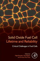 Solid Oxide Fuel Cell Lifetime and Reliability: Critical Challenges in Fuel Cells