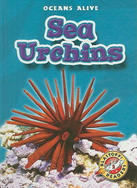 Sea_Urchins