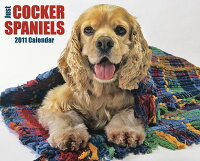 Just_Cocker_Spaniels_Calendar