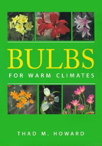 Bulbs_for_Warm_Climates
