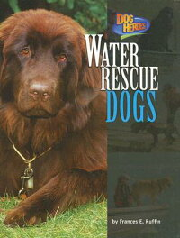 Water_Rescue_Dogs