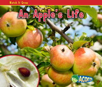 An_Apple's_Life