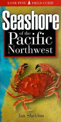 Seashore_of_the_Pacific_Northw