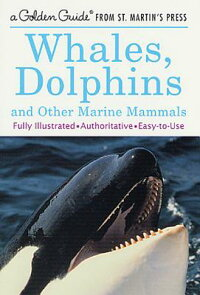 Whales,_Dolphins_and_Other_Mar