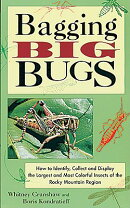 Bagging Big Bugs: How to Identify, Collect, and Display the Largest and Most Colorful Insects of the