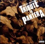 【輸入盤】EndOfDays:TributeToPantera[Various]