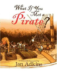 What_If_You_Met_a_Pirate?