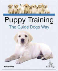 Puppy_Training_the_Guide_Dogs