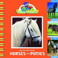 My_First_Book_about_Horses_and
