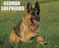 2015-GermanShepherds[WillowCreekPress]