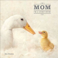 Mom,_I'm_a_Lucky_Duck