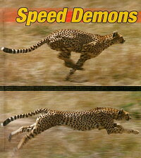 Speed_Demons