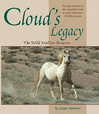 Cloud's_Legacy:_The_Wild_Stall