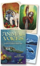Animal Voices Oracle: Connecting with Our Endangered Friends