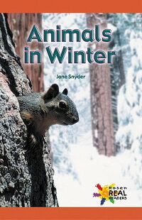 Animals_in_Winter