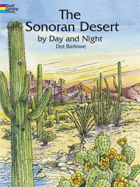 The_Sonoran_Desert_by_Day_and
