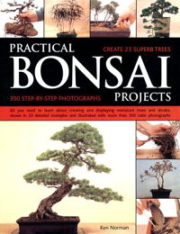 PRACTICAL_BONSAI_PROJECTS(P)