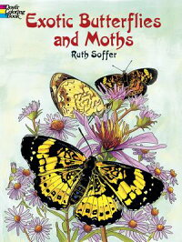 Exotic_Butterflies_and_Moths