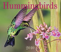 Hummingbirds_Calendar