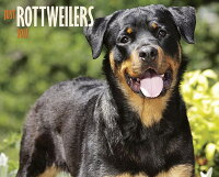 JustRottweilers