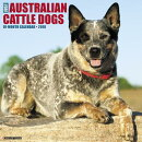 Just Australian Cattle Dogs 2018 Wall Calendar (Dog Breed Calendar)