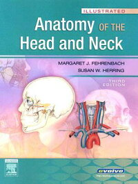 Illustrated_Anatomy_of_the_Hea