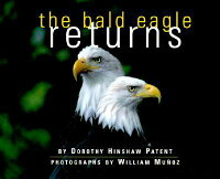 The_Bald_Eagle_Returns
