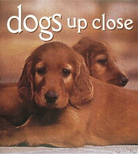 Dogs_Up_Close