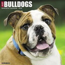 Just Bulldogs 2018 Wall Calendar (Dog Breed Calendar)