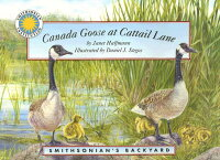 Canada_Goose_at_Cattail_Lane