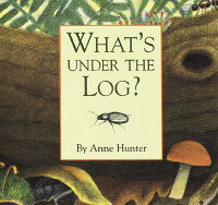 What's_Under_the_Log?