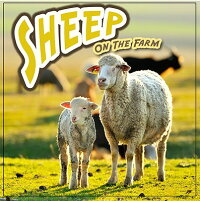 Sheep_on_the_Farm