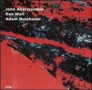 【輸入盤】WhileWe'reYoung[JohnAbercrombie]