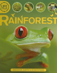 LifecyclesRainforest