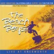 【輸入盤】LiveAtKnebworth1980[BeachBoys]