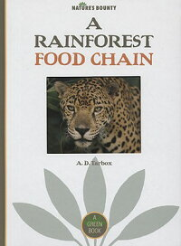 A_Rainforest_Food_Chain