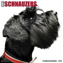Just Schnauzers 2018 Wall Calendar (Dog Breed Calendar)