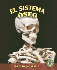 El_Sistema_Oseo_=_The_Skeletal