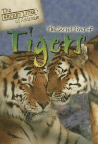 The_Secret_Lives_of_Tigers