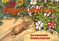 Pepper's_Adventure