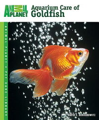 Aquarium_Care_of_Goldfish