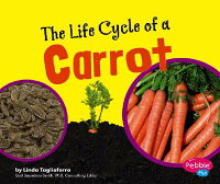 The_Life_Cycle_of_a_Carrot